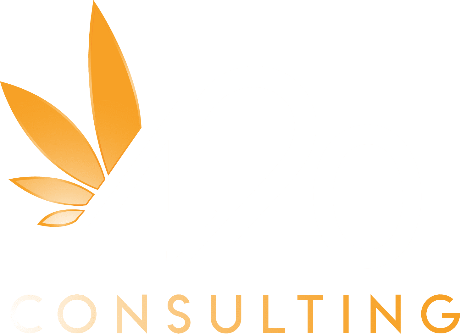 420Consulting